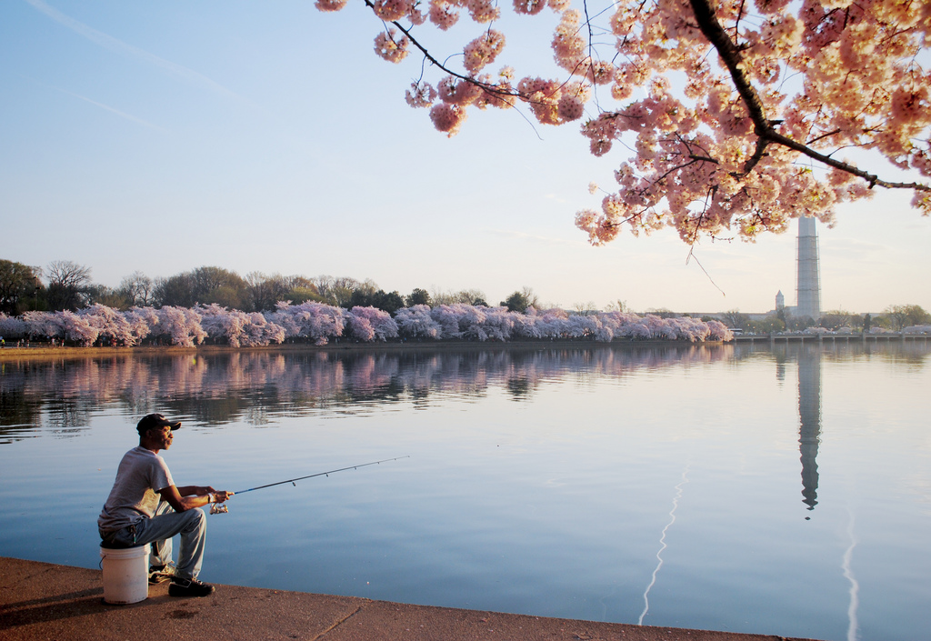 "Erin Kelly, ""Early Morning Fishing"""