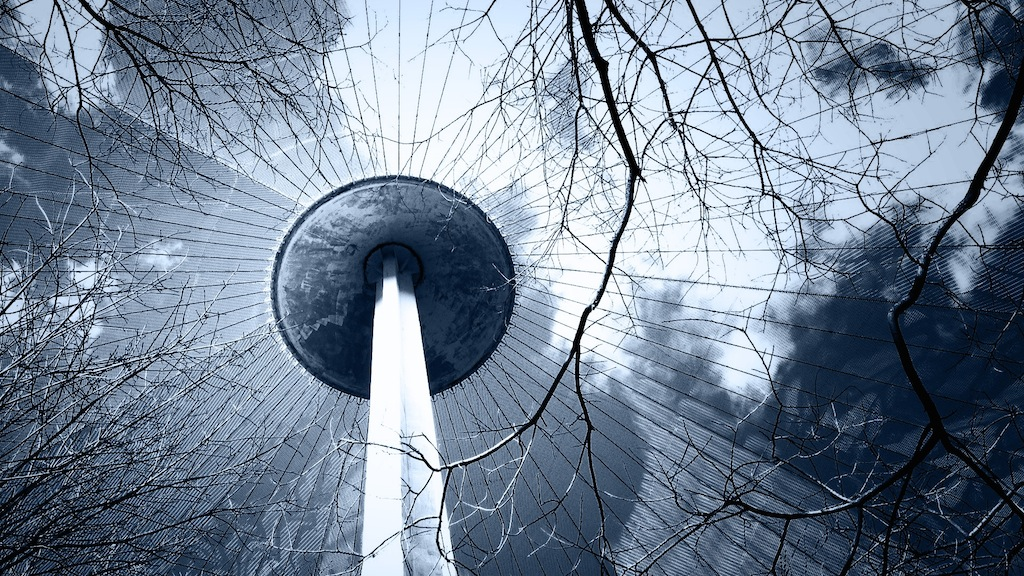 Canopy by Ryan Maxwell