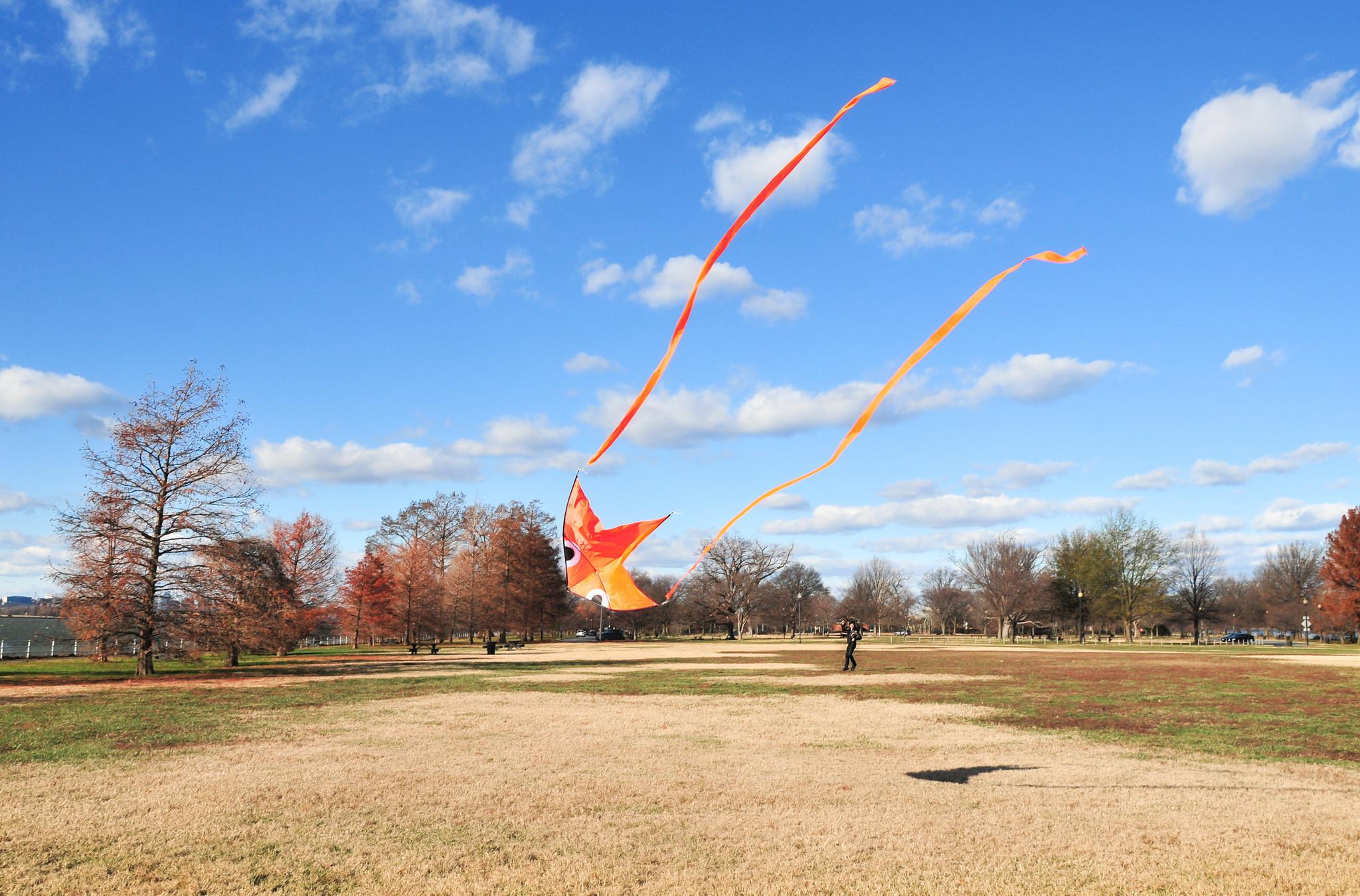 Christmas Day Kite by John Leszczynski