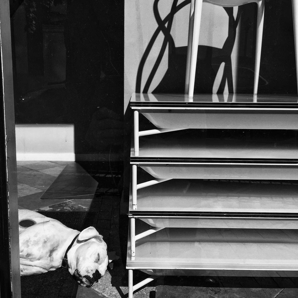 Lazy Mondays by Mikey Kennedy