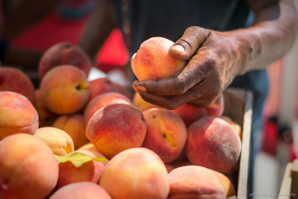 Peach by Jeffrey Morris